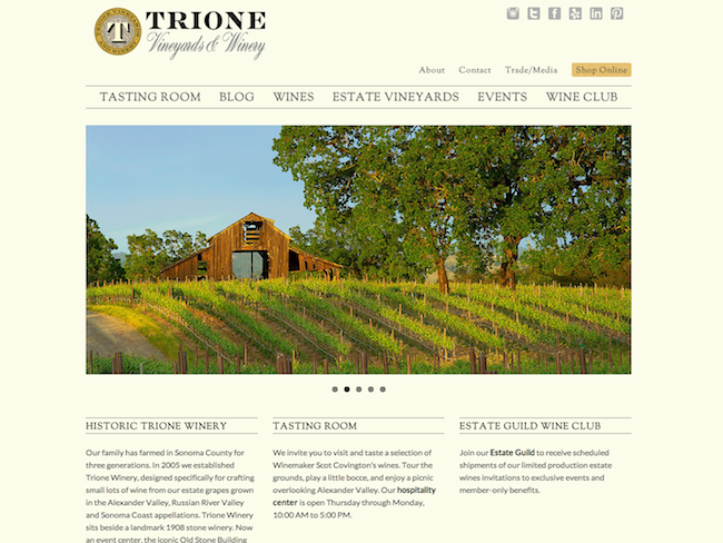 Screenshot of Trione Winery WordPress website